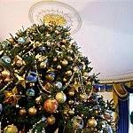 """Oh Christmas Tree"""
