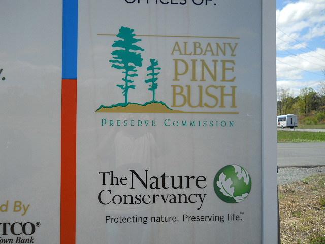 The Pine Bush