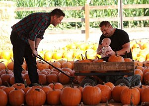 Looking for Pumpkins