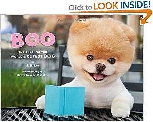 Boo's book