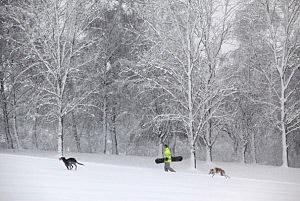 Snow At A Golf Course