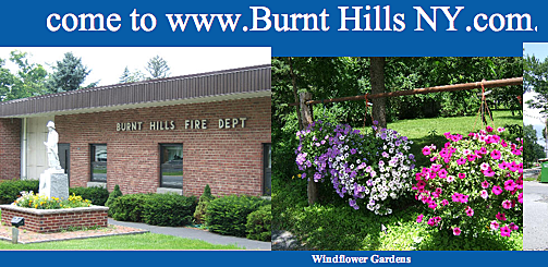 screenshot burnt hills website