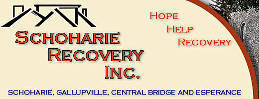 screenshot schoharie recovery