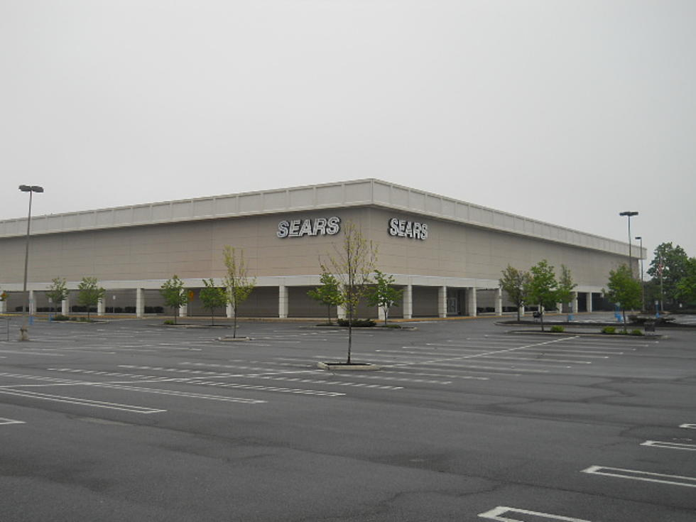 Whole Foods Restaurant Albany