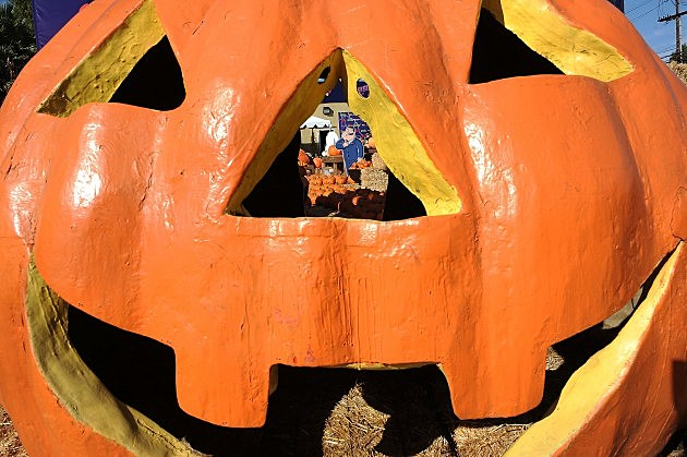 "Fox Hosts ""Animation Domination"" Pumpkin Patch Takeover"
